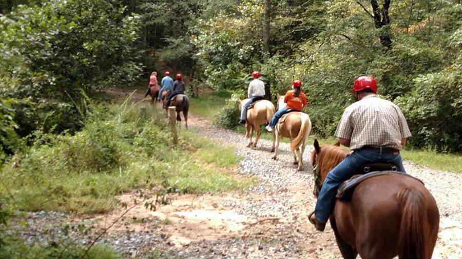 Blue Ridge Mountain Trail Rides at Hells Hollow