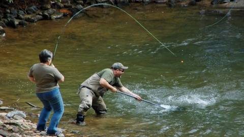 Trout Fishing - Fannin County Chamber of Commerce - Blue